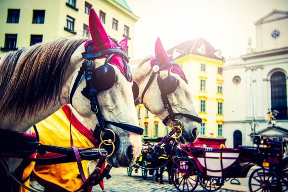 horses-taxi-istock_000062344454_full-2-585x390