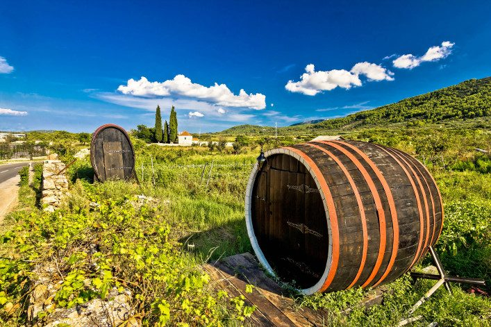 Wine barrels on Stari Grad plain