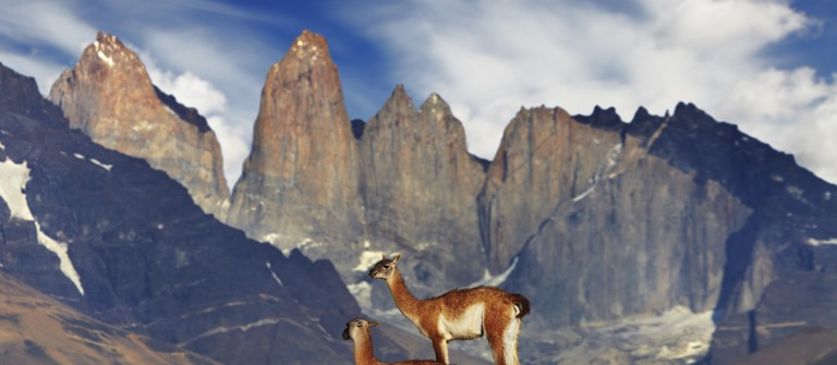 urlaubsguru.de_torres-del-paine-patagonien-chile-istock_000029675958_large_1200