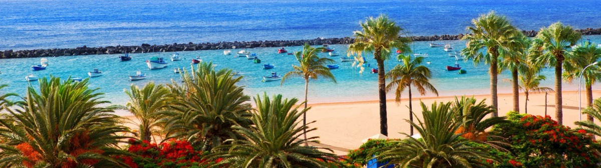 beach-las-teresitas-in-santa-cruz-de-tenerife-north-istock_000064791603_largea