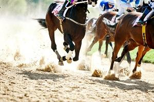 Reiseziele August_Events_Festivals_Palio di Siena Pferderennen