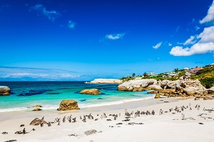 Reiseziele Februar_Badeurlaub_Südafrika