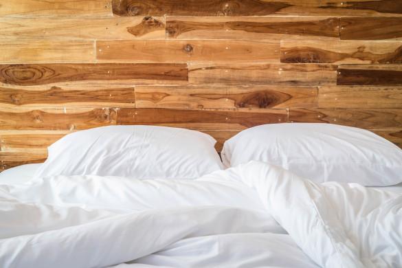 Bettwanzen Im Hotel Tipps Gegen Ungeziefer Im Bett
