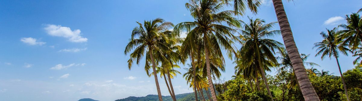 bai-sao-beach-phu-quoc-island-vietnam-shutterstock_299278025-2