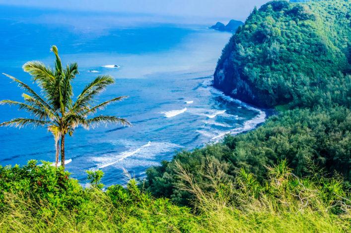 scenic-birds-eye-view-of-hawaiian-coastline-istock_000032154578_large-2