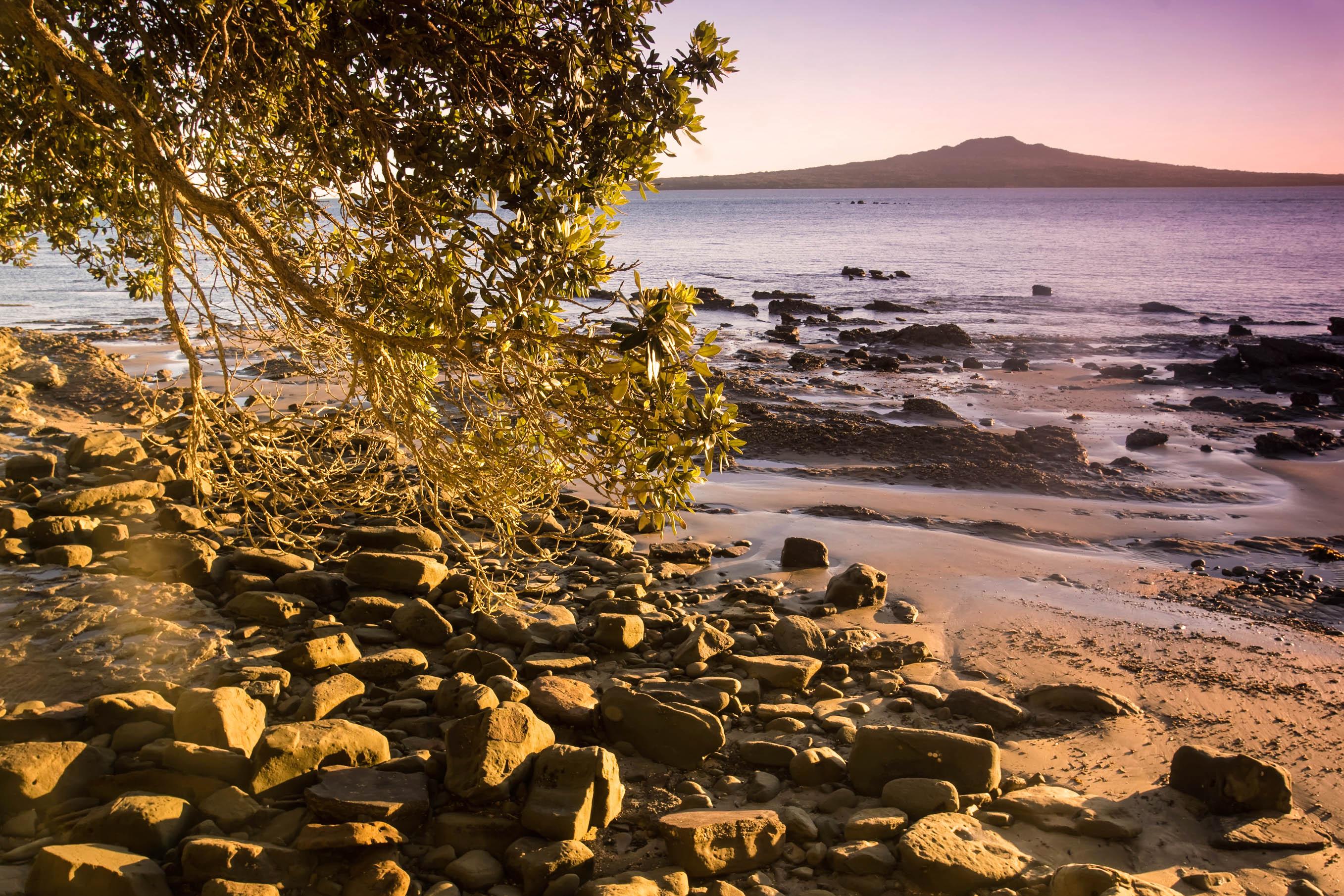 Rangitoto Island Auckland Tipps