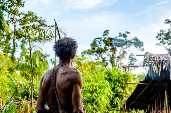 Indonesien, Neuguinea