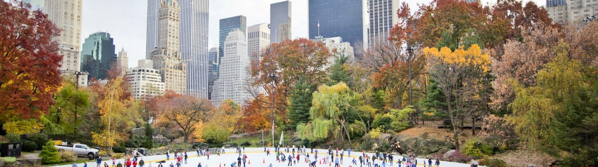 Ice skaters having fun in New York Central Park in fall_shutterstock_88847629