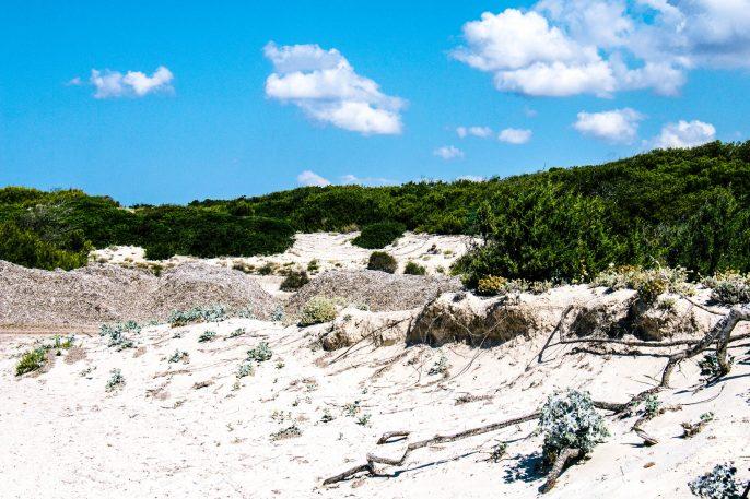 Schönsten Strände Mallorcas Es Trenc