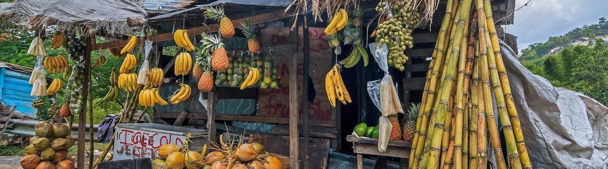 Jamaika-Fruit-Stand-shutterstock_760232347-1