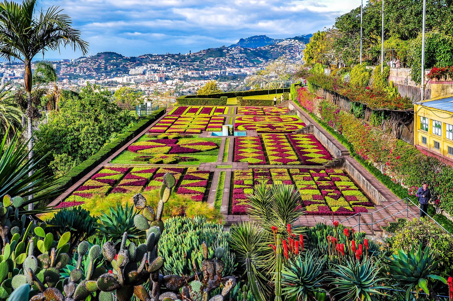 Madeira Tipps Botanischer Garten Funchal