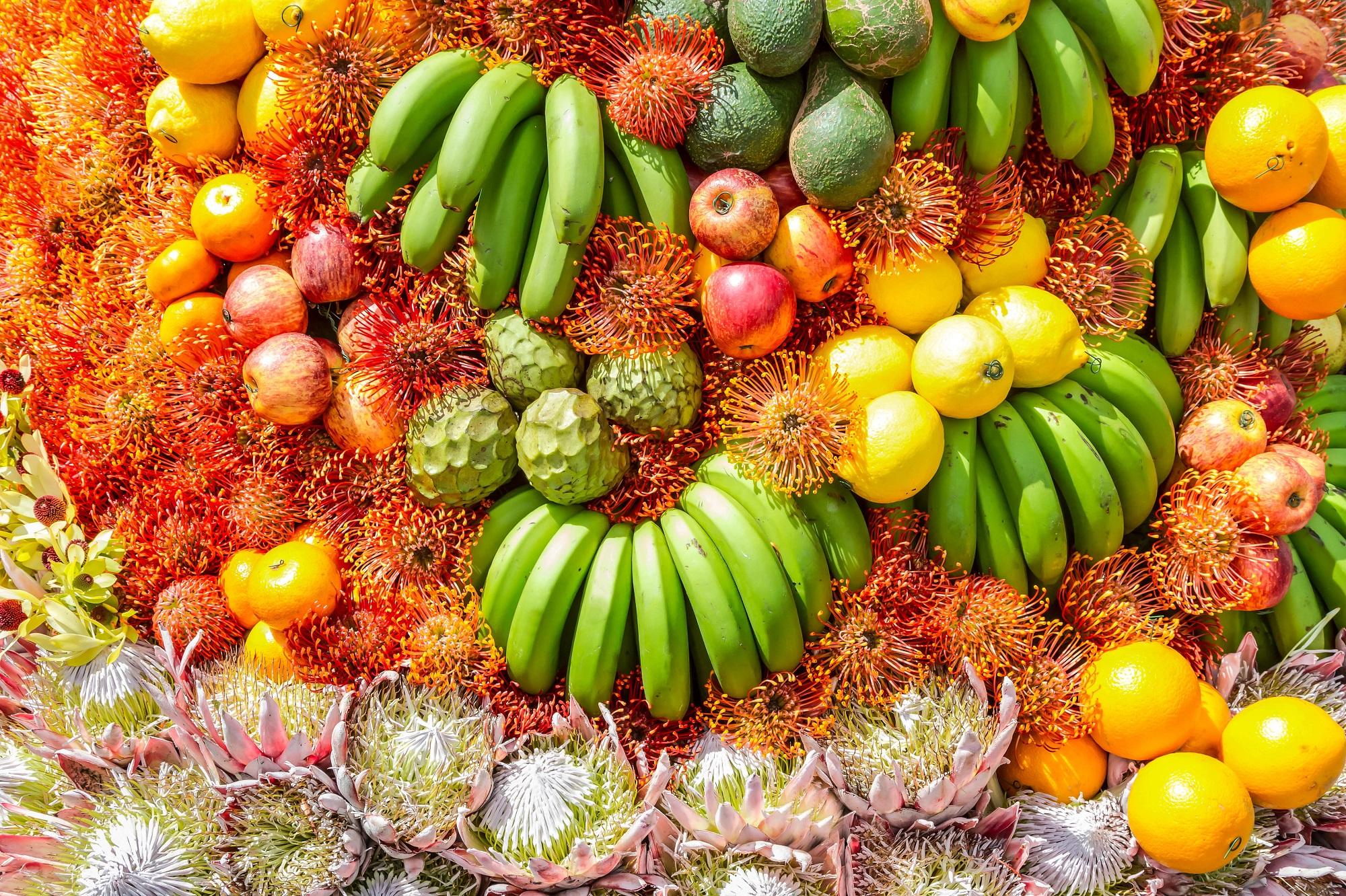Madeiras Blumenfestival
