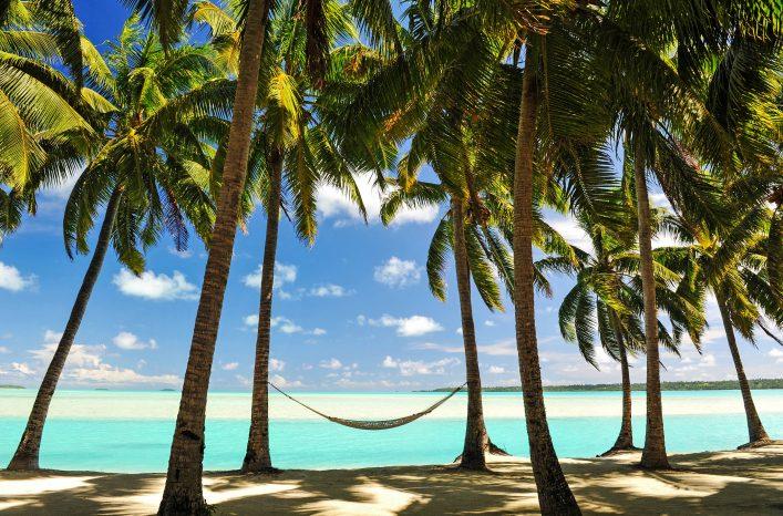 Paradise Destination