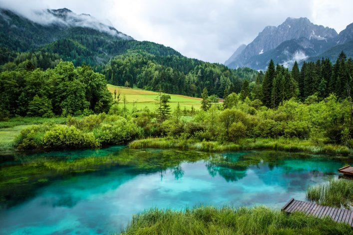Zelenci pond in Slovenia