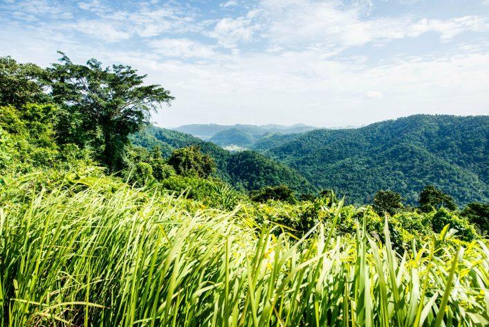 markung-panorama-im-khao-yai-nationalpark-thailand-istock_000049811192_large-2