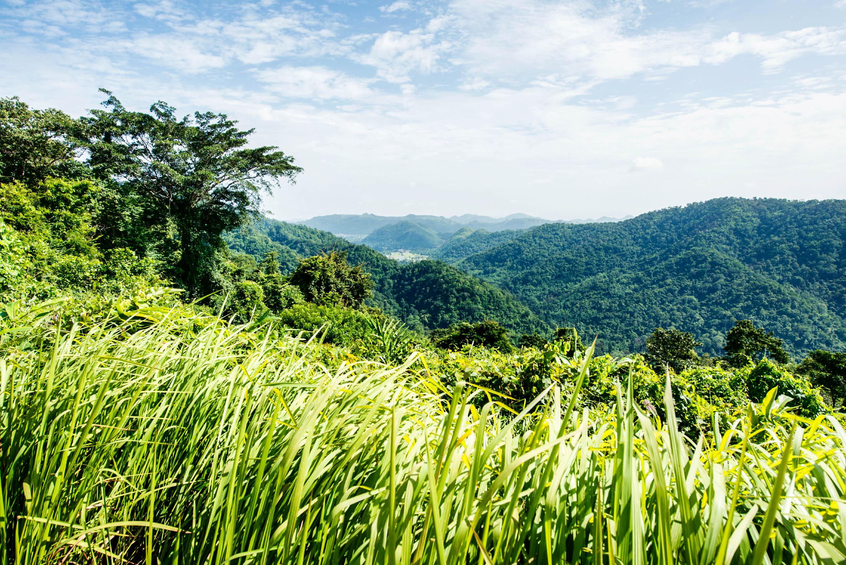 Panorama Khao Yai Nationalpark Thailand Dschungel