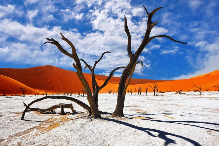 namibia-salzwüste-shutterstock_437288254