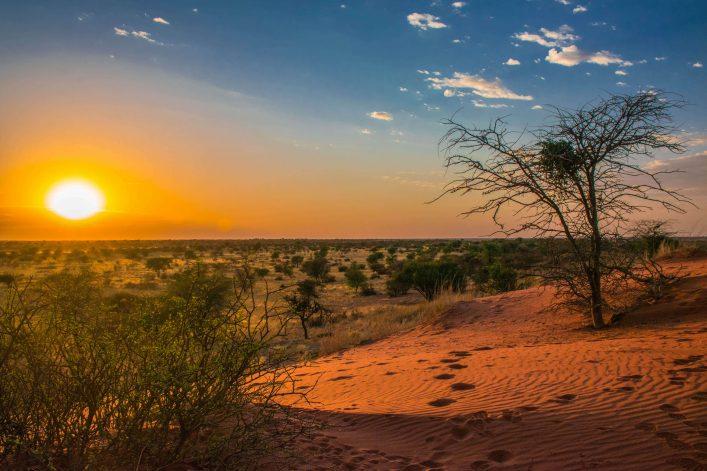 sonnenaufgang-in-der-kalahari-wueste-namibia-istock-508256370-2