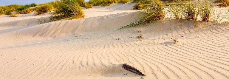 Nordsee Strand