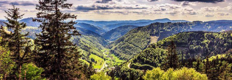 Feldberg Mountain in Spring