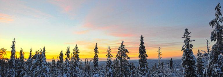 sonnenaufgang-ueber-einem-wald-in-lappland-finnland-istock-532523935-2-1-e1541667824270