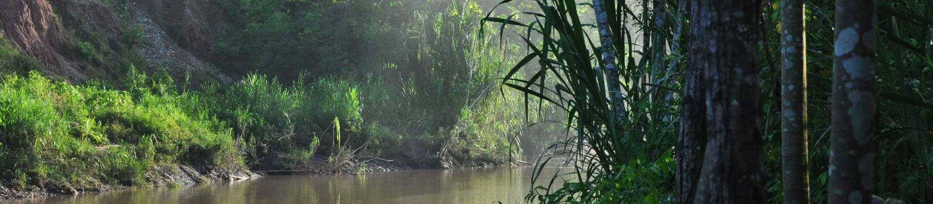 Amazonasgebiet Peru