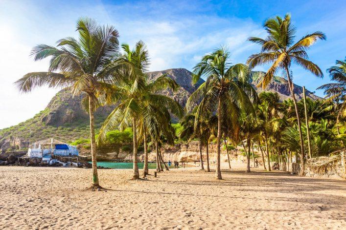 coconut-trees-in-tarrafal-beach-in-santiago-island-cape-verde-istock_000074123687_large-2