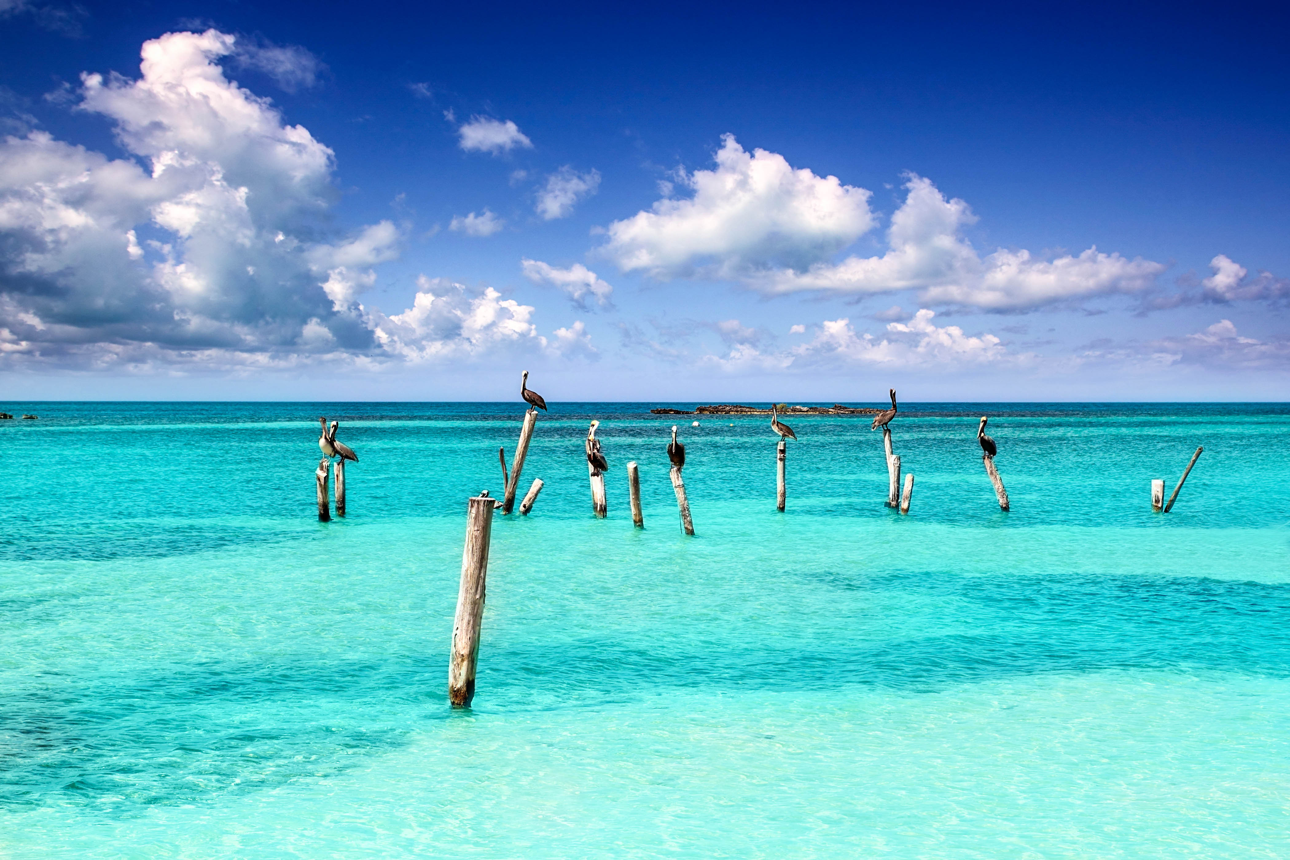 Strand, Meer und Pelikane in Cancun