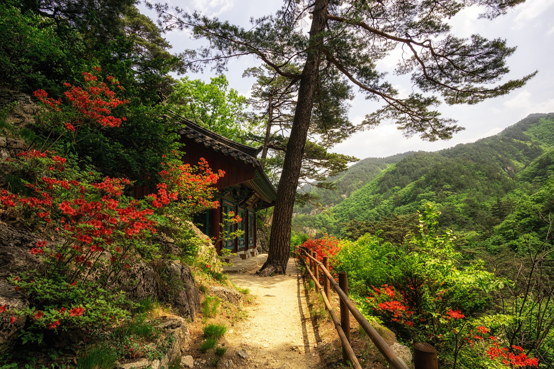 Gangneung in Südkorea