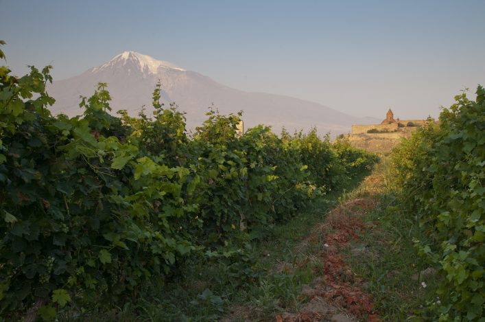 The Khor Virap monastery with Ararat mountain and vineyards.