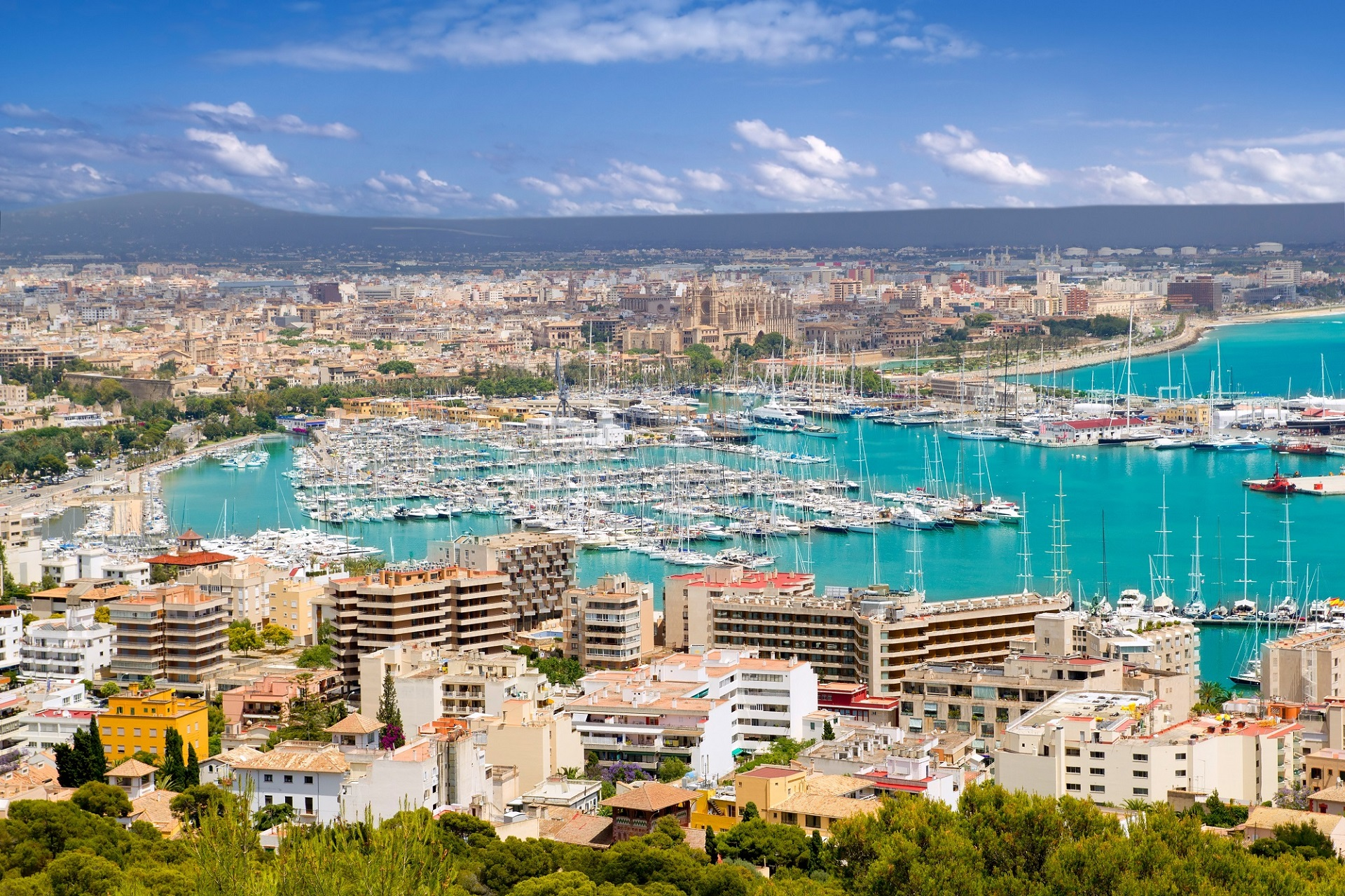 Blick von oben auf Palma de Mallorca.
