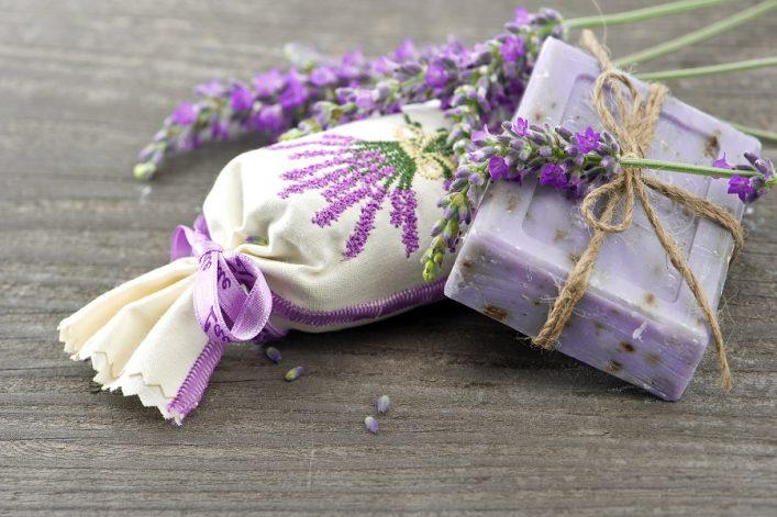 Lavendelfelder in der Provence: Lavendel in verschiedenen Variationen