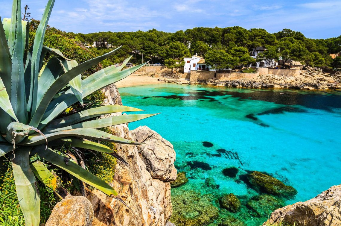 agave-palnt-beach-bay-azure-turquoise-sea-water-hill-pine-tree-cala-gat-majorca-island-spain-shutterstock_143322982-2-copy-e1526976894746