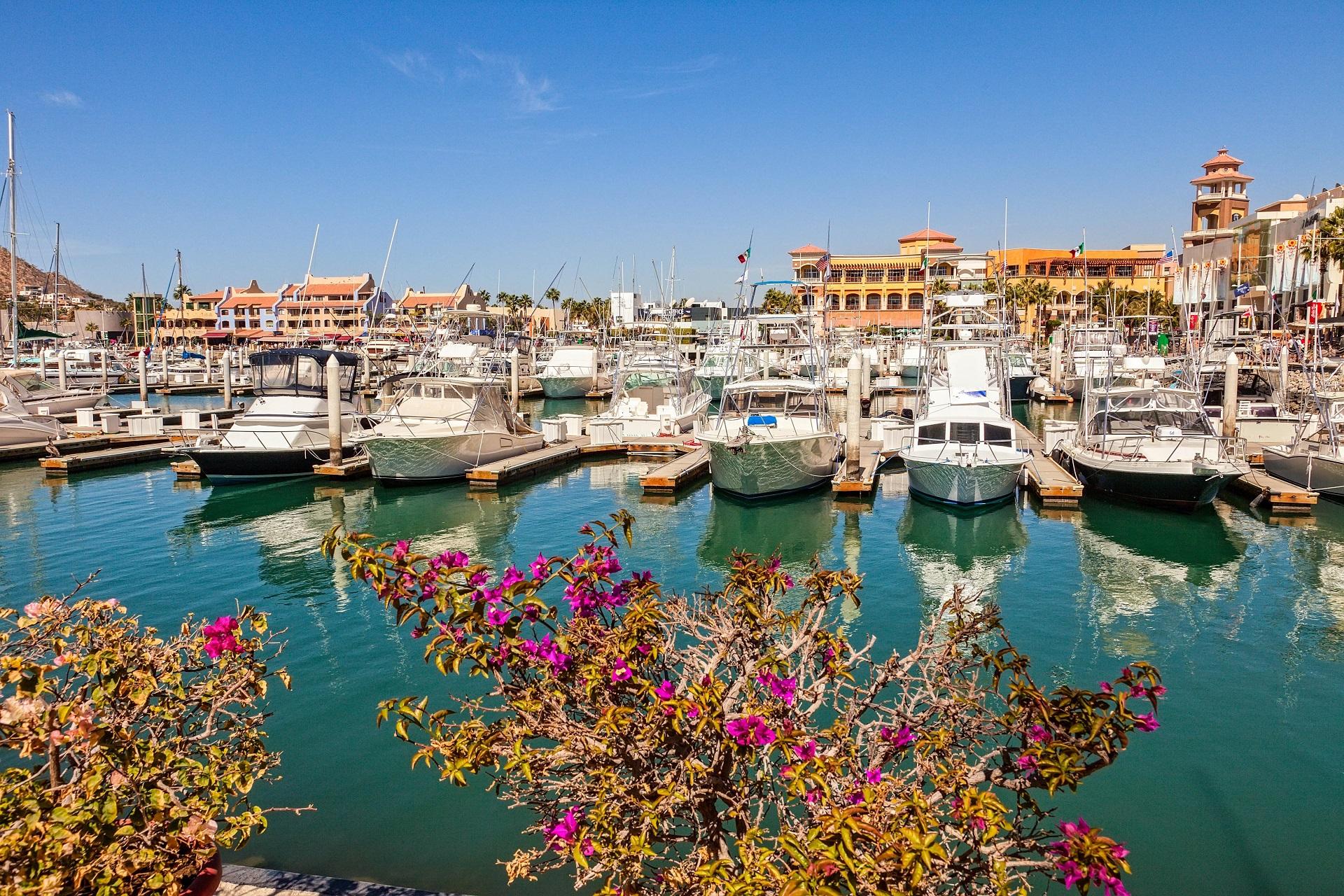 Besichtigt den Yachten Marina in Cabo San Lucas.
