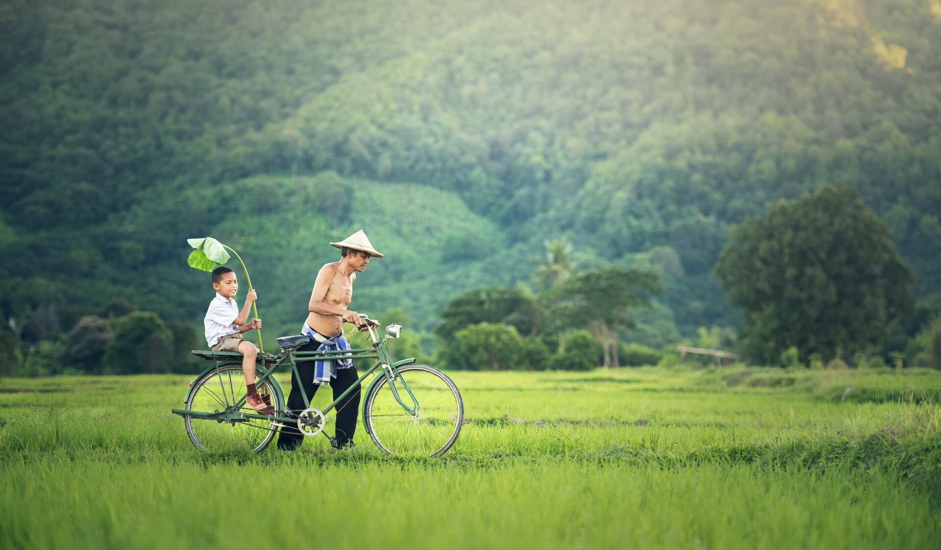Kambodschaner in einem Reisfeld