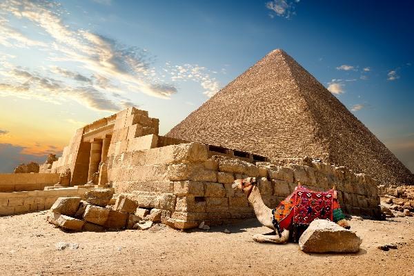 Ein Kamel hockt vor einer Pyramide in der Wüste Ägyptens