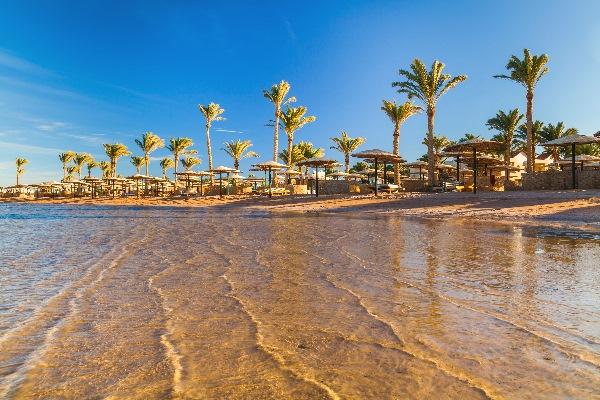Flach abfallender, feinsandiger Strand in Hurghada mit hohen Palmen im Hintergrund