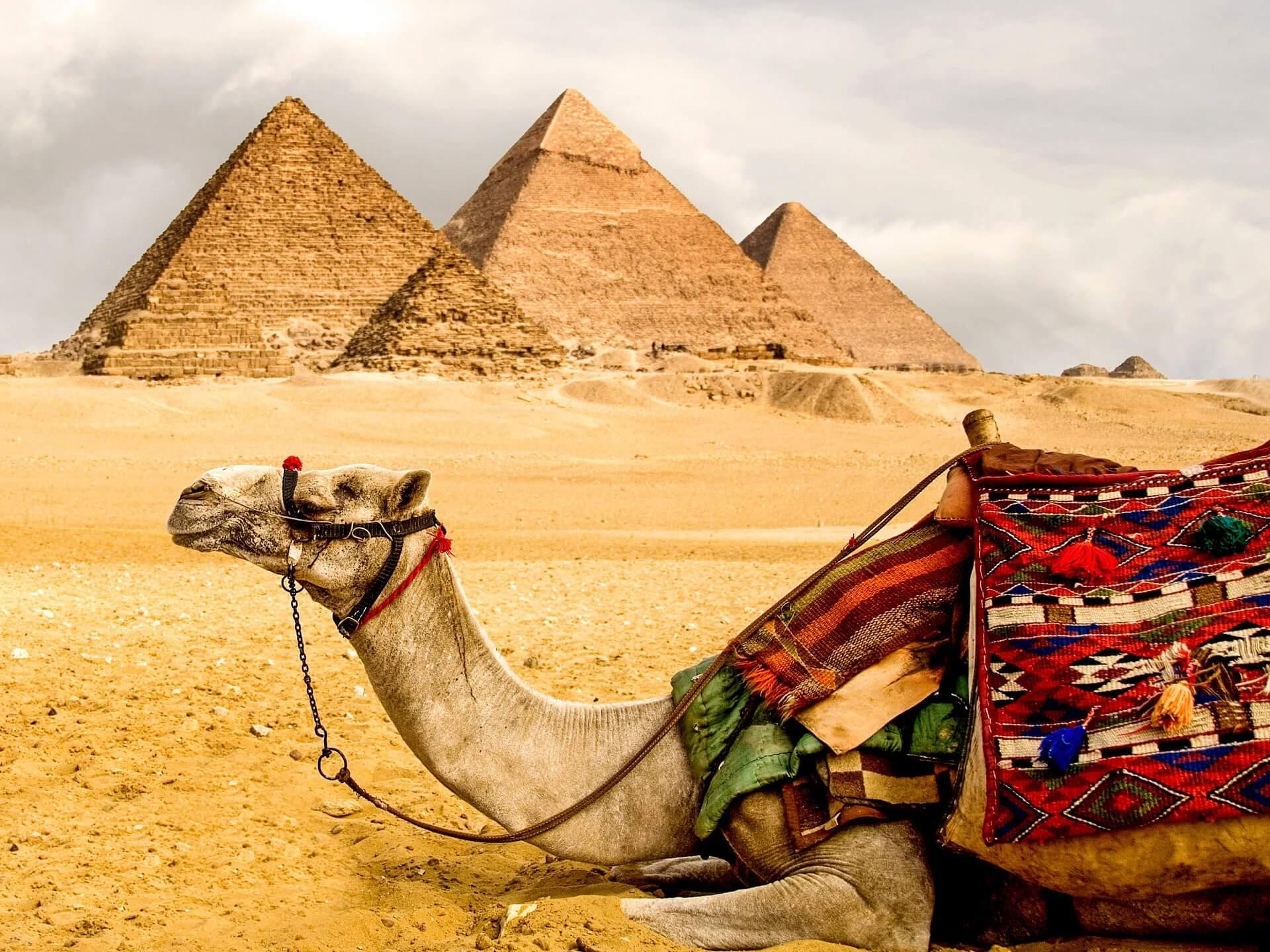Natürlich gibt es in Ägypten einige Sehenswürdigkeiten, die man gesehen haben muss