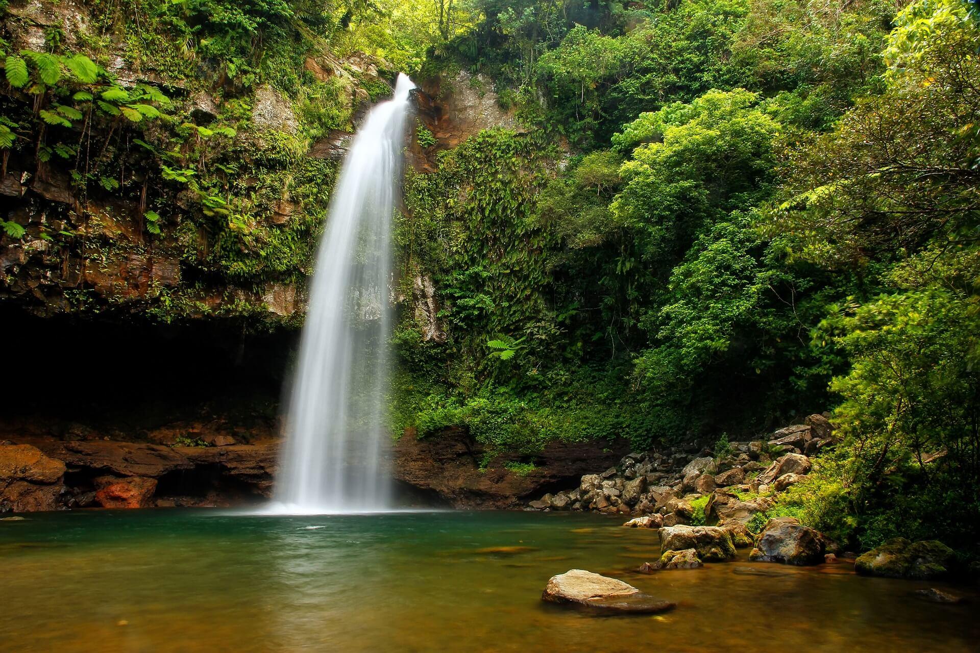 Im Inneren der Inseln findet man dichte Regenwälder und Wasserfälle