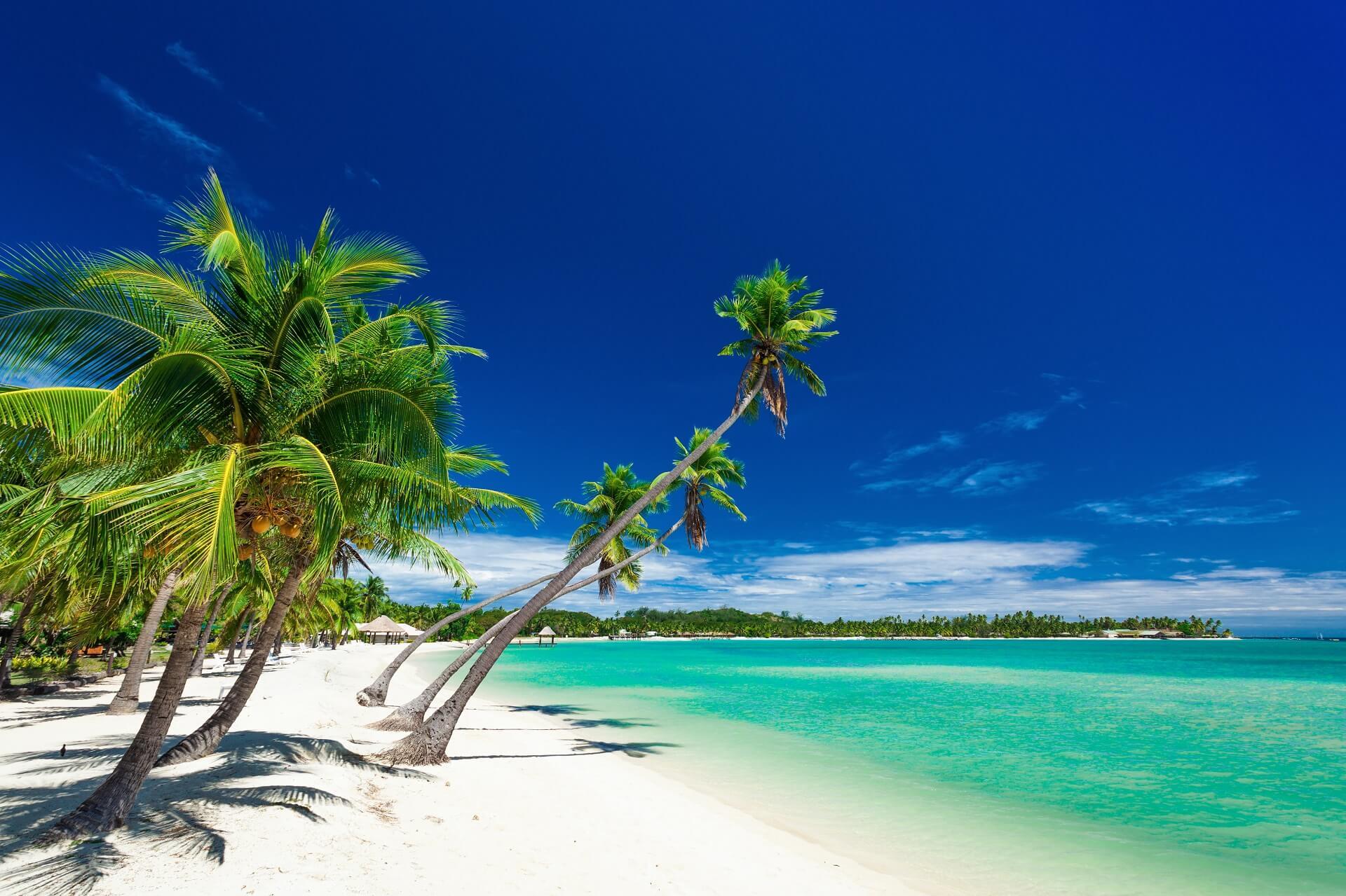 Die Natur auf den Fidschi Inseln ist ein wahres Paradies