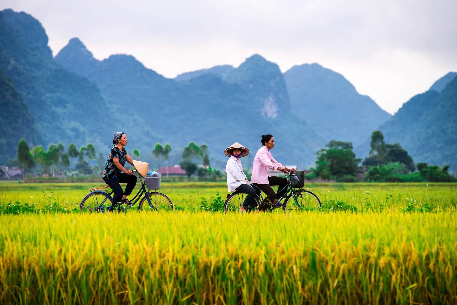 Vietnam bietet seinen Reisenden eine wunderschöne Natur an den Küsten und im Innenland