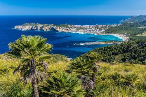 neuer_Header_Cala-Agulla-and-beautiful-coast-at-Cala-Ratjada-of-Mallorca-Spain-shutterstock_432078658-2