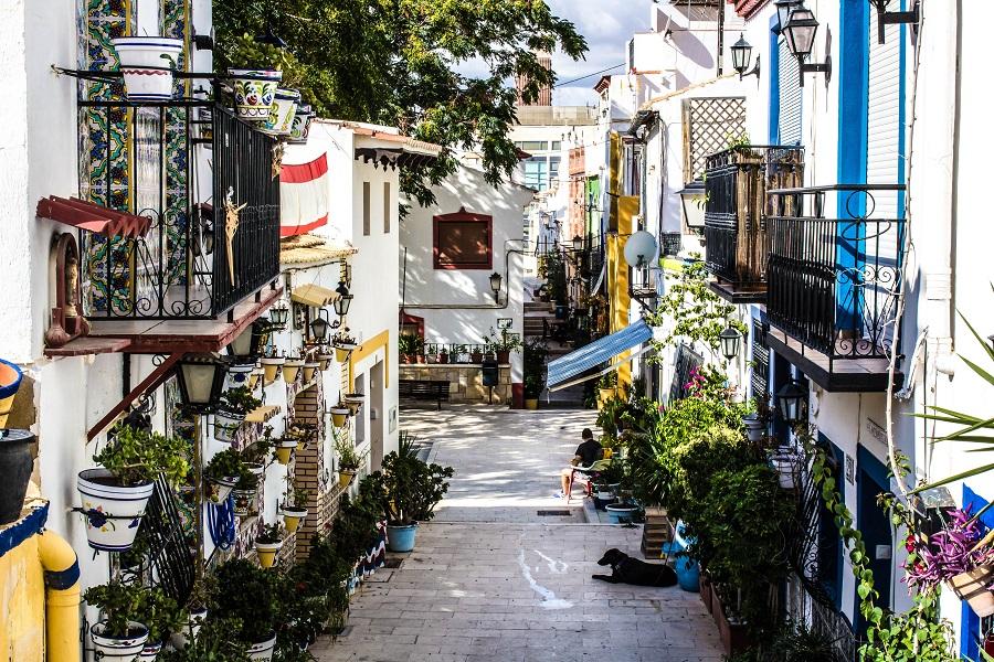 Ralph Rozema Santa Cruz Alicante Tipps
