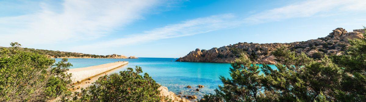 Plants-by-the-sea-in-Spalmatore-beach-Sardinia-shutterstock_757850710