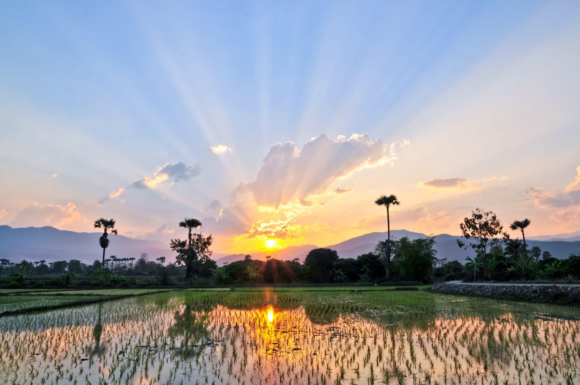 Thailand bietet euch einige FKK Hotels