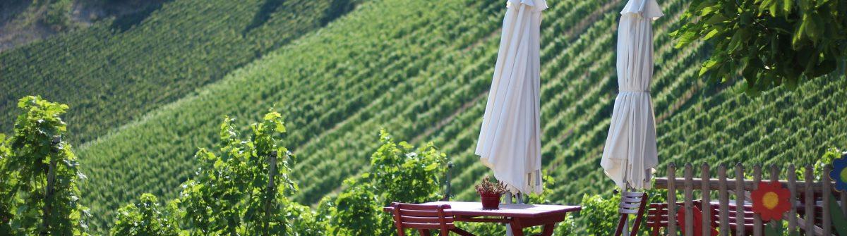 wine-road-3565497_1920-suedsteiermark