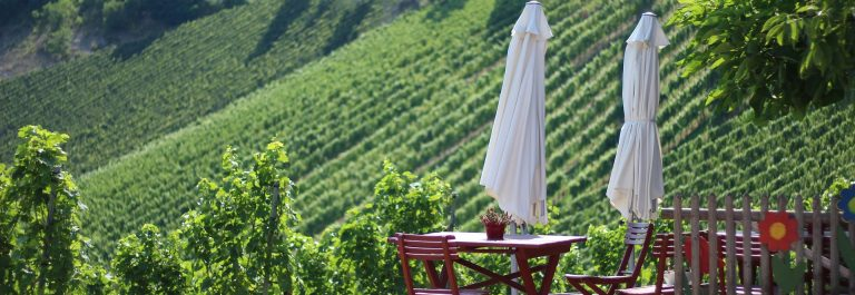 wine-road-3565497_1920-suedsteiermark
