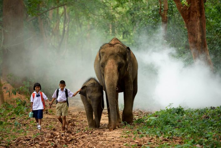 Kids-with-elephants-Laos-iStock-604338958
