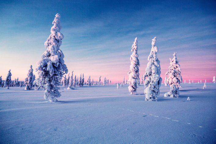 kakslauttanen-frozen-trees-e1542289536536