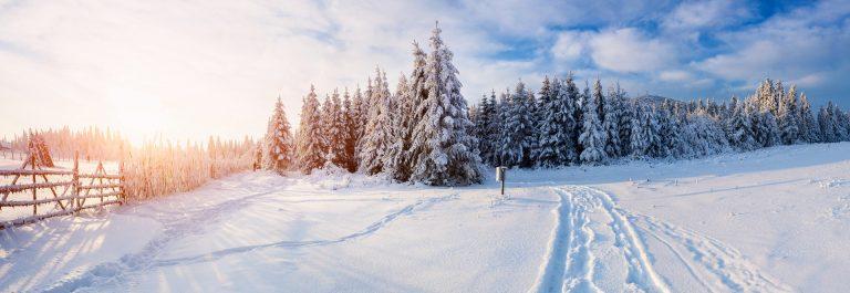 winter-landscape-snow-shutterstock_230158126a